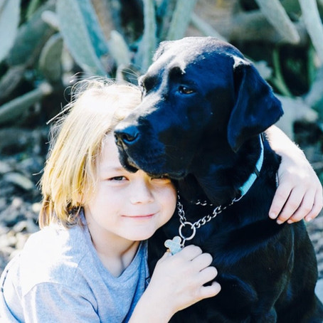 A diabetes guardian angel, no technology could replace, Milo & Remi