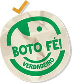 boto-fe.png