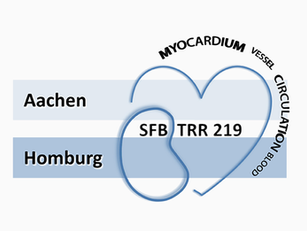 SFB/TRR219 session @ DKG congress 2020 in Mannheim: postponed due to COVID-19