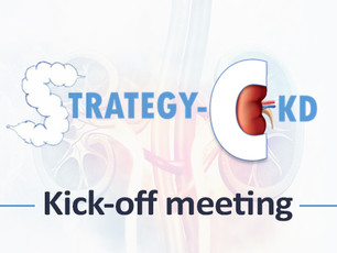 Strategy-CKD Kick-off meeting