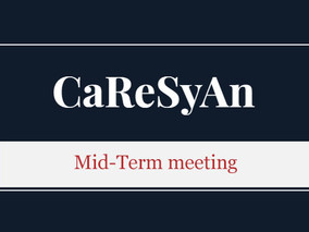 CaReSyAn Mid-Term meeting Agenda, March 1, 2019, University Clinic of Aachen, Germany