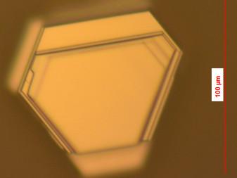Bi2Se(3-x)Sx growth on Sapphire (BAR ILAN UNIVERSITY)