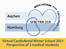 Virtual CardioRenal Winter School 2021 - Perspective of 3 medical students