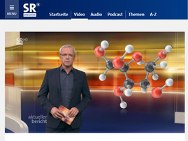 Report on a recent publication of the SFB/TRR219 on television