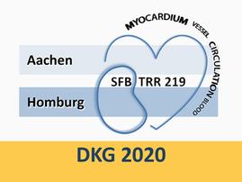 SFB/TRR219 session @ DKG congress 2020