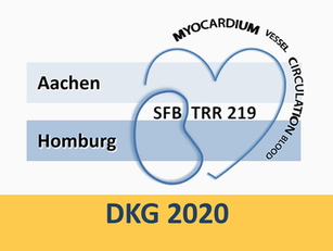SFB/TRR219 session @ DKG congress 2020