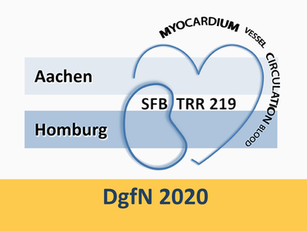 SFB/TRR219 session @ DgfN congress 2020