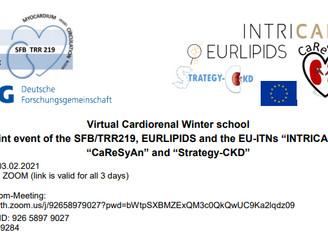 Virtual Cardiorenal Winter school.