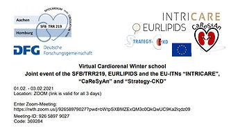 Virtual Cardiorenal Winter school.jpg