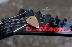 bronze anodized titane guitar pick