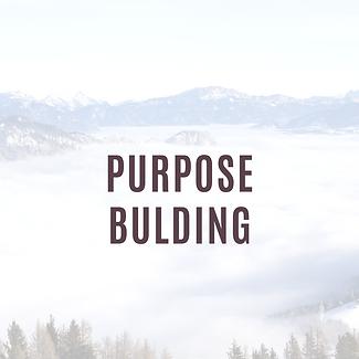 Purpose Bulding.png