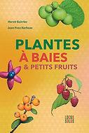 plantes à baies et petits fruits.jpg