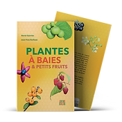 60532ec56789a56e4b02911b_PlantesBaies_Mo