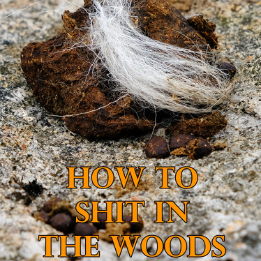 An environmentally sound approach to a lost art. How to shit in the woods - Kathleen Meyer