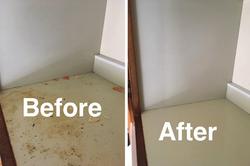 Professional Clean Floor