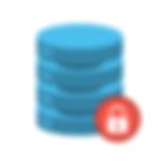 Data Security Logo V1.png