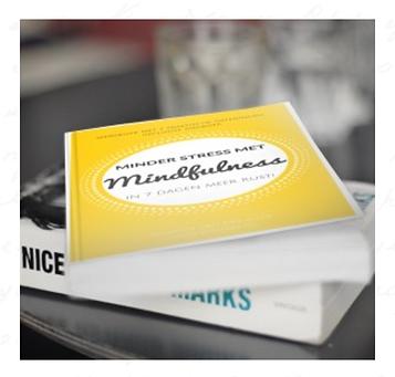gratis e-book minder stress met mindfulness