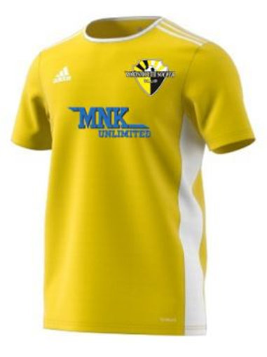 adidas Portsmouth SC Jersey 2020 (Yellow)
