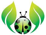 ladybug-logo-vector-4994429_edited.jpg
