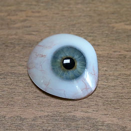 Eye-reg.jpg