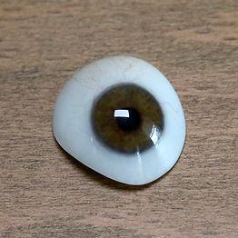 Eye-shell.jpg
