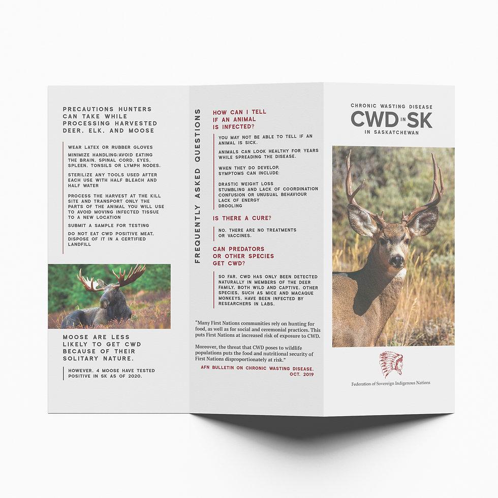 CWD_Brochure-1.jpg