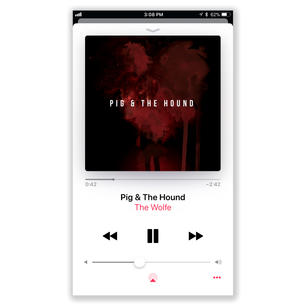 Pig & The Hound Digital Cover Mockup.jpg