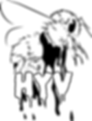 HYV Band Logo