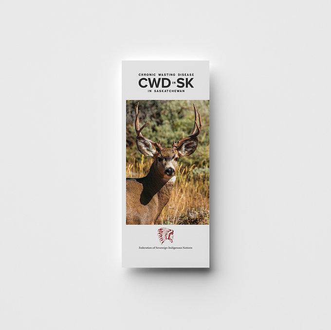 CWD_Brochure-Front_Mockup.jpg