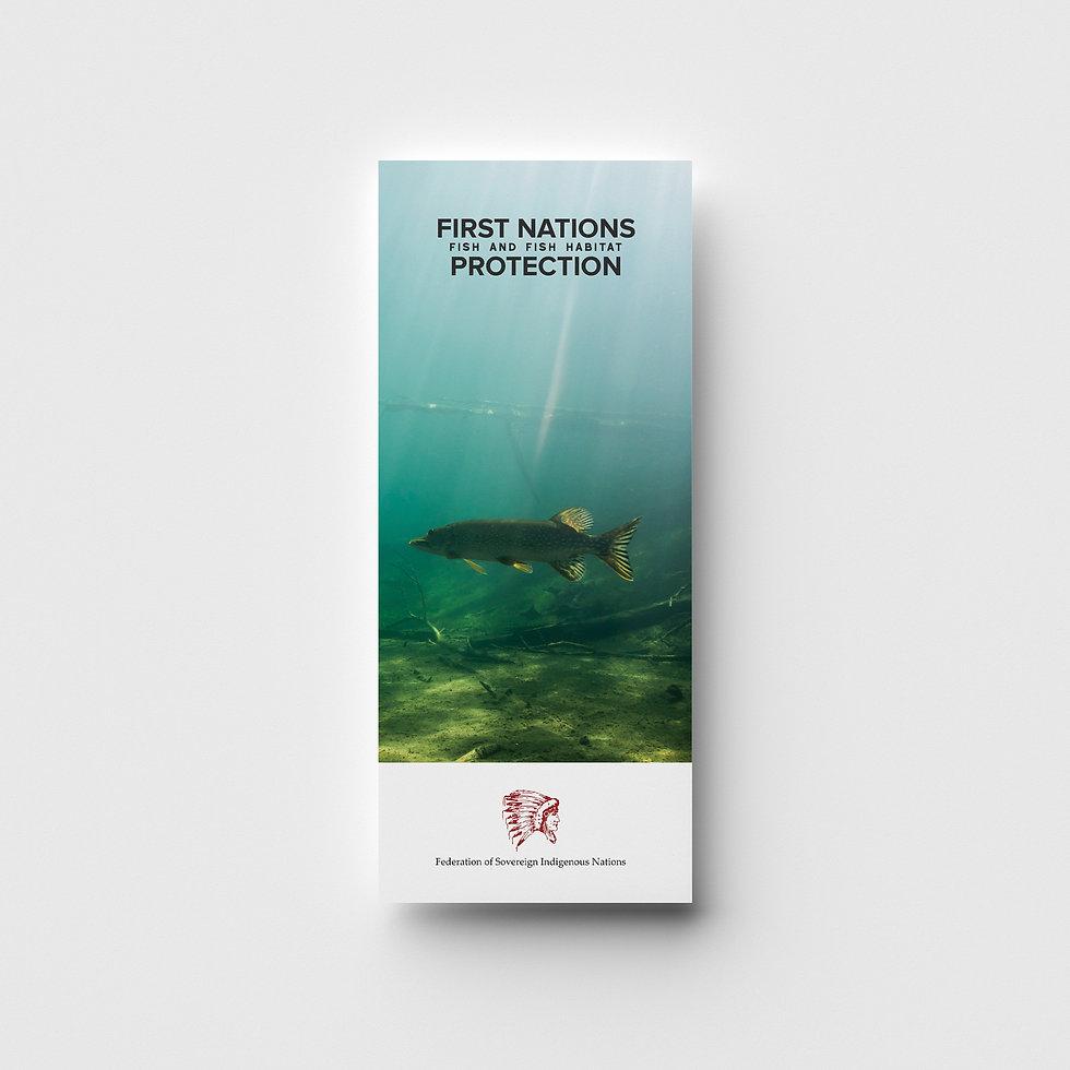 FishBrochure-01.jpg