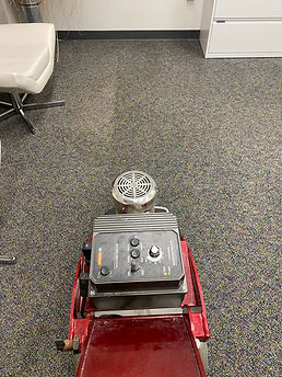 Carpet Cleaning Pictures.jpg