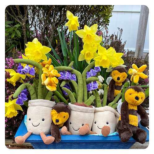 Jellycat Amusable Flowers