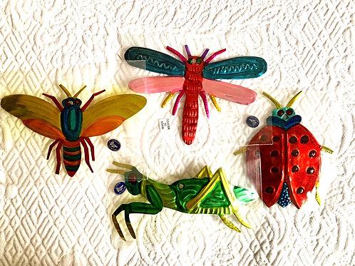 Mexican Tin Bugs
