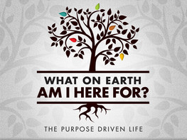 40 Days of Purpose