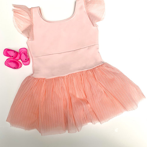 Linear Mesh Tutu Dress (pink)