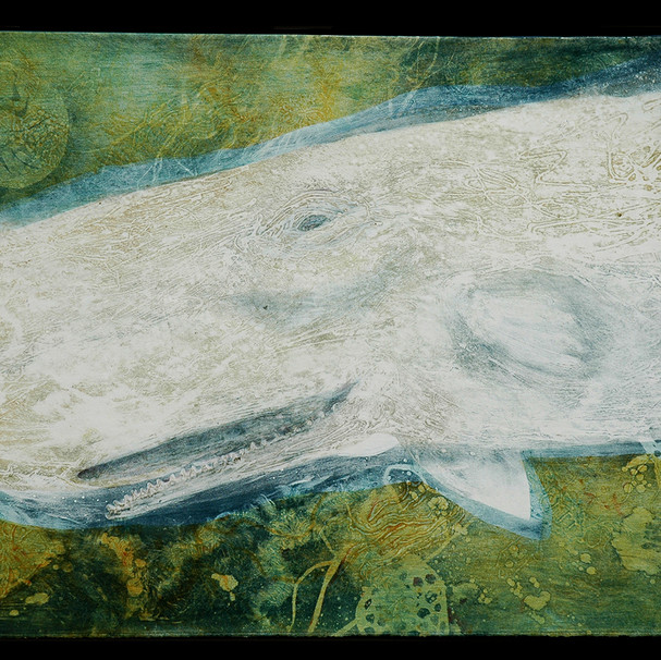 Moby Dick: a mighty mildness