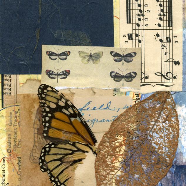 Prairie music I