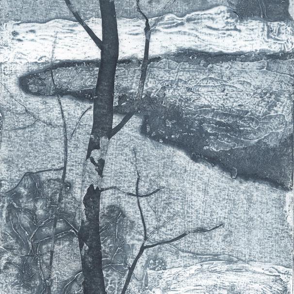 Lake Suite II: lake ice