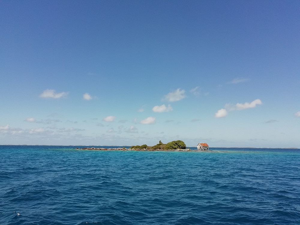 Motu dans le lagon de Tikehau Tuamotu, Croisière catamaran dans les Tuamotu