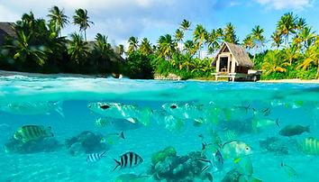 Lagon Bora Bora croisière catamaran avec skipper et hôtesse Polynésie Française