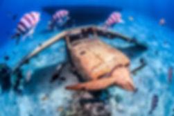 Location catamaran croisière plongée Bora Bora Polynésie Française