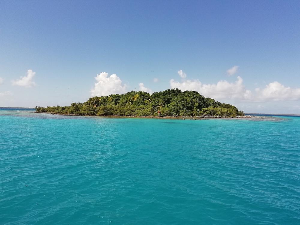 Motu dans le lagon Tikehau, croisière catamaran avec équipage Tuamotu Polynésie Française