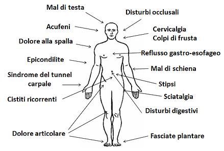 Ostopatia Milano - Elena Tollini, cosa tratta l'osteopata?
