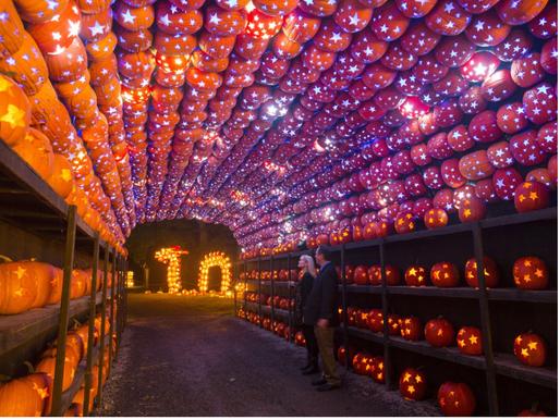 Ways to Enjoy a Covid-Safe Halloween on Long Island
