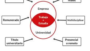 ¿Cómo facilitar la empleabilidad e inserción laboral?. La formación dual universitaria.