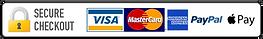 Secure-Checkout-Visa-Mastercard-Amex-Pay