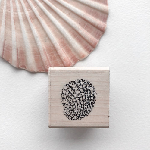 Small Shell 2 Wooden Stamp
