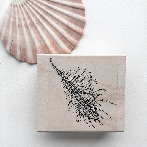 Venus Murex Wooden Stamp