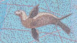 California Sea Lion 112 DJI_0698