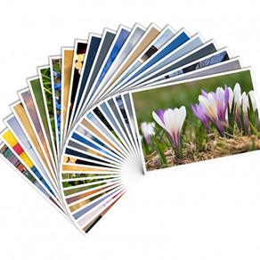 Обработка фотографий - в подарок при заказе печати!
